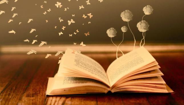 6360447078671270831012652109_books