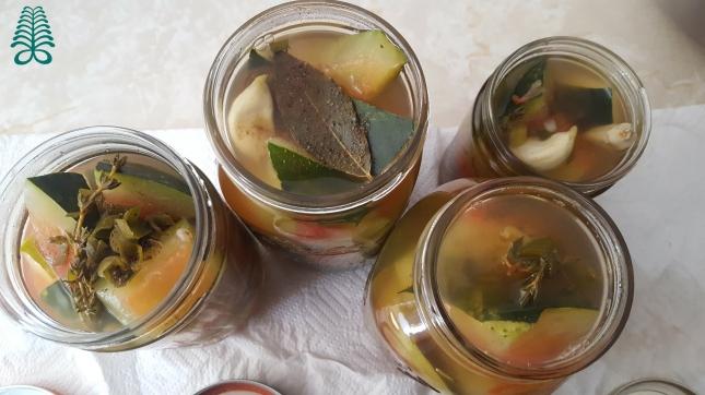 picklewater6